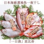 日本海厳選地魚一夜干「一日漁」恵比寿(えびす)のどぐろ、甘鯛、れんこ鯛、かれい