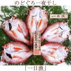 のどぐろ一夜干「一日漁」小 70〜100g(5〜6枚)