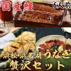 浜松・浜名湖 うなぎ贅沢セット 6人前 浜名湖産・国産鰻(お歳暮のし対応可)