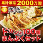 お取り寄せ 餃子 送料無料 100個セット ギフト 特産品 大阪 冷凍食品 業務用 訳あり 父の日 得トクセール オープン記念