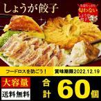 セール 送料無料 絶品タレなし餃子100個セット 約1.8k