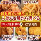 送料無料 人気の5種からお好きな2種が選べるお惣菜セット 訳あり 業務用 冷凍食品  唐揚げ 鶏肉 特産品 ご飯のお供 大阪ギフト からあげ 鳥肉 餃子同梱