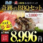 セール 送料無料 楽天牛肉ランキング第1位 極厚秘伝のタレ漬け 牛焼肉セット4kg 約20人前 焼き肉  焼肉  BBQ  バーベキュー 冷凍食品