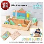 積み木 音が鳴る積み木 サウンドブロック ブロック パズル 積木 10ヶ月 1歳 2歳 3歳 男の子 女の子 子供 幼児 ベビー 知育玩具 出産祝 RiZKiZ 送料無料