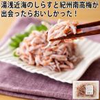 紀州釜揚げしらす梅肉和え 和歌山県湯浅 まるとも海