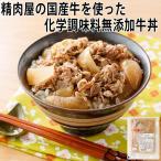 国産牛の牛丼の具 140g 和歌山 国産牛専門店 きた川(食品 惣菜 料理 冷凍)