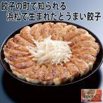 (惣菜 プレゼント ランキング 帰省土産 ポイント)国産豚肉・野菜使用 どうまい!浜松餃子(タレなし) 15粒