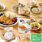 旬の手作りおかず(健幸ディナー) 基本販売セット_9511 15品入 (食品 惣菜 和風惣菜 洋風惣菜 中華惣菜)