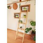 木製 飾り棚 はしご型 ラダ−シェルフ ディスプレイ ラック  5段