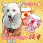 柴犬 服 着物 犬服 中型犬 晴れ着 女の子 かわいい 愛