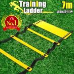 トレーニングラダー ラダートレーニング 器具 スポーツ用具 スポーツ用品  7m プレート13枚 こども に 室内 屋外 陸上用具 イエロー