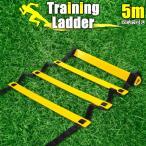 トレーニングラダー サッカー フットサル バスケット トレーニング 敏捷性 5m プレート 9枚 イエロー ブラック 黄 黒 ラダートレーニング