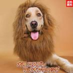 犬用 ライオン コスプレ かつら 犬  たてがみ ライオン コスプレ グッズ かわいい おしゃれ ペット コスチューム 送料無料