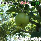 青森りんご☆送料無料☆訳ありりんご王林5キロ14〜20玉