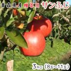 青森りんご☆送料無料☆贈答用サンふじ3キロ8〜11玉 発送は11月30日頃から