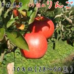 青森りんご 送料無料 バラ詰めりんご12kg(12キロ前後)28〜50玉【わけあり・訳ありりんご】