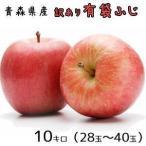 青森りんご☆送料無料☆訳ありりんご有袋ふじ10キロ28-40玉