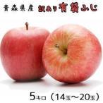 青森りんご☆送料無料☆訳ありりんご有袋ふじ5キロ14-20玉