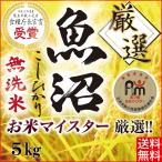 米 5kg 無洗米 こしひかり 最高級 魚沼産 産地直送 コシヒカリ お米マイスター厳選 29年産 一等米 100% 新米 送料無料