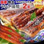 うなぎ 蒲焼き 国産 ギフト 鰻 うなぎ蒲焼き 国内産 特大 2尾 (1尾約230〜250g前後) 送料無料 グルメ 魚介 魚