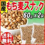 ショッピング国産 国産 もち麦 大麦 もちむぎ もち麦っこ 60g×2袋  βグルカン 送料無料