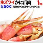 カニ 海鮮 刺身 生 カニ かに 蟹 グルメ カニ爪 生食OK ズワイガニ 爪肉 約1kg (500g (正味400g入)×2個) 刺身用 送料無料