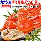 カニ 海鮮 かに 蟹 グルメ ズワイガニ ズワイ ボイル 姿 3kg 5尾 かにみそ 不揃い (カナダ産) 3~5人前 かに味噌 業務用 鍋 送料無料