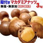 ナッツ マカダミアナッツ 殻付き 3kg(1kg×3袋) 送料無料 ロースト 製菓材料 マカデミアナッツ ナッツ