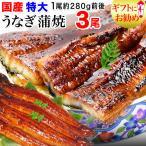 うなぎ 蒲焼き 国産 鰻 うなぎ蒲焼き 九州産 超特大(約260〜285g前後×3尾) 送料無料