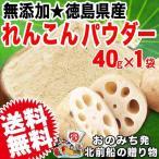 れんこんパウダー レンコン粉末 パウダー 国産 無添加 40g×1袋入り 徳島県産 お試し 送料無料