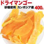 ドライ マンゴー 450g×1袋 カンボジア産 ドライマンゴー メール便限定 送料無料 砂糖使用