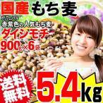 もち麦 国産 グルメセール もちむぎ(ダイシモチ) 6kg(1kg × 6袋) 令和元年度産 レジスタントスターチ βグルカン わけあり 訳あり 送料無料