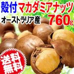 ナッツ マカダミアナッツ 殻付き 760g(380g×2袋) セール マカデミアナッツ メール便限定 送料無料