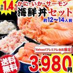 海鮮丼 かに・いか・サーモン 3種セット 合計1.4キロ!(約12人〜14人前)訳あり 送料無料