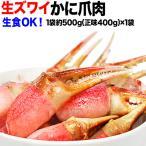 (カニ かに 蟹) 生 ズワイガ二 カニ爪 ポーション 500g(正味量450g)×1袋 爪 ポーション  爪肉 蟹 セット