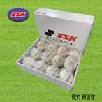 SSK エスエスケイ 硬式野球 練習球 高校野球 ボール GD85