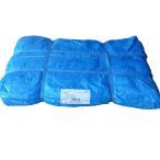 ショッピングブルー ブルーシート 10m×10m 2枚入 送料無料   養生シート 野積みシート