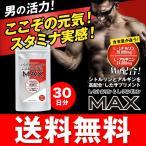 シトルリン+アルギニンMAX 30日分/240粒 精力 サプリメント 送料無料