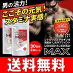 【圧倒的な含有量と値段】L-シトルリン+L-アルギニンMAX 30日分×お得な2袋セット 【大容量240粒入/2袋】日本製サプリ