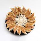 ショッピングぎょうざ 敬老の日 餃子 お取り寄せ 2種120個 ぎょうざのたれ付き 送料無料 おつまみ ご当地グルメ