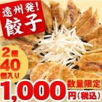 餃子 1000円ポッキリ 2種40個(遠州餃子20個・スタミナ餃子20個) 薄皮自慢 お取り寄せ ご当地 グルメ お試し 餃子のたれ付き ギョウザ