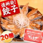 餃子 お取り寄せ 遠州餃子20個 ぎょうざのたれ付き おつまみ ご当地グルメ
