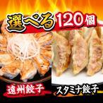 餃子 メガ盛り120個 送料無料 お取り寄せ 選べる餃子 ぎょうざのたれ付き ご当地グルメ 静岡産直