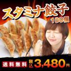 セール 餃子 送料無料 お取り寄せ ススタミナ餃子100個(50個×2袋) ぎょうざのたれ付き おつまみ ご当地グルメ