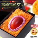 宮崎マンゴー(2L/約350g)宮崎産 秀品 ギフト 贈答 国産 送料無料