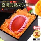 宮崎マンゴー(3L)宮崎産 国産マンゴー 完熟 秀品 送料無料