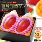 宮崎マンゴー(2L×2玉/約700g)宮崎産 秀品 ギフト 贈答 送料無料