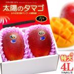 太陽のタマゴ(4L×2玉)宮崎産 宮崎マンゴー 糖度15度 送料無料