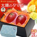 父の日ギフト専用 太陽のタマゴ(大玉2Lサイズ×2玉/700g)宮崎産
