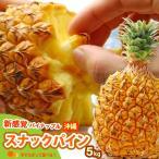 スナックパイン(5kg前後)沖縄産 パイン パイナップル 送料無料